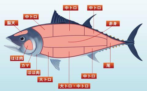 pict-kaitai01