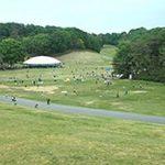 大人も子供も1日遊べて大満足!自然あふれる森林公園