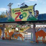 可愛いコアラに会える埼玉県こども動物自然公園