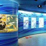 リーズナブルに楽しめてお得感いっぱいの『さいたま水族館』